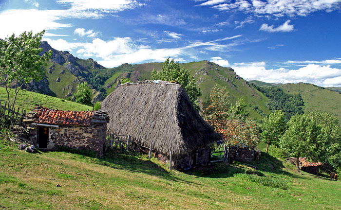 Casa rural cerca senda del oso asturias teverga for Casa rural con chimenea asturias